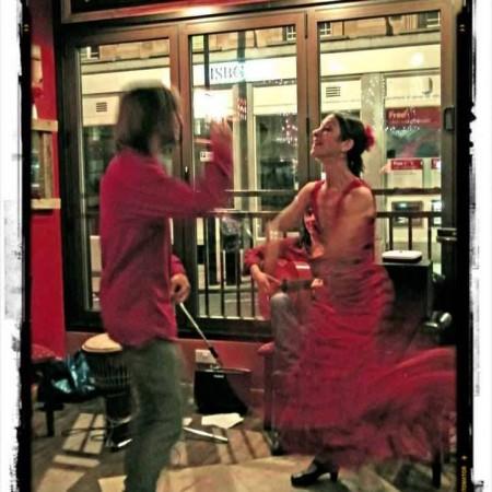 Flamenco loco